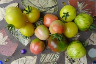 Tomato Cascade. 2013.
